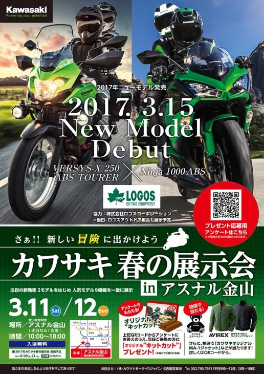 Kawasaki B1_0214