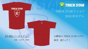 Tシャツ ST-002-バーガンディー