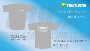Tシャツ ST-003-グレー
