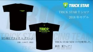 Tシャツ ST-003-ブラック×グリーン
