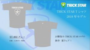 Tシャツ ST-002-グレー