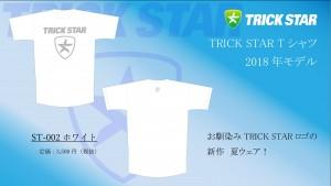 Tシャツ ST-002-ホワイト